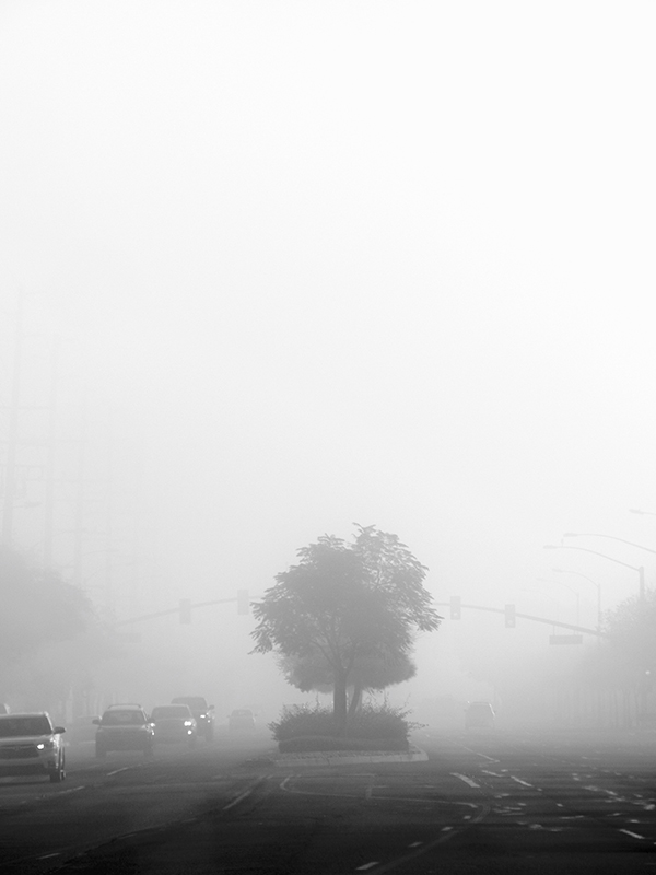foggy_morning_1