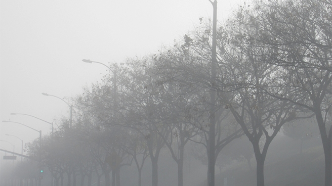 foggy_morning_4